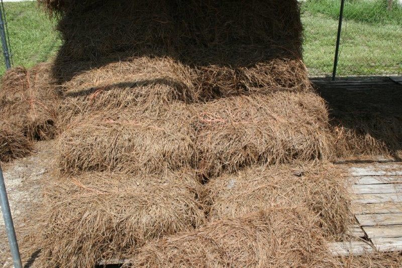 Dunnellon Landscape Supply Red Mulch Brown Mulch